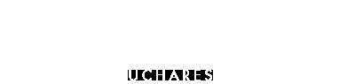 logo etienne shoes atelier de pantofi la comanda